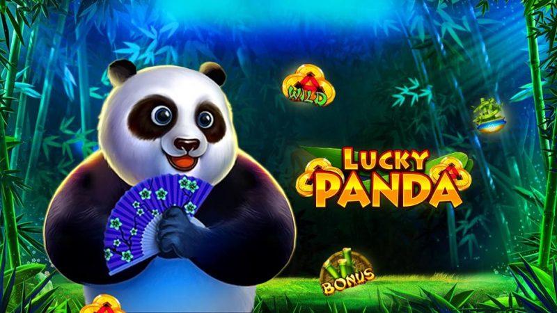 lucky panda เกมSlot Online กับความน่ารักของเจ้าหมีตัวอ้วนกลมจาก SLOTXO